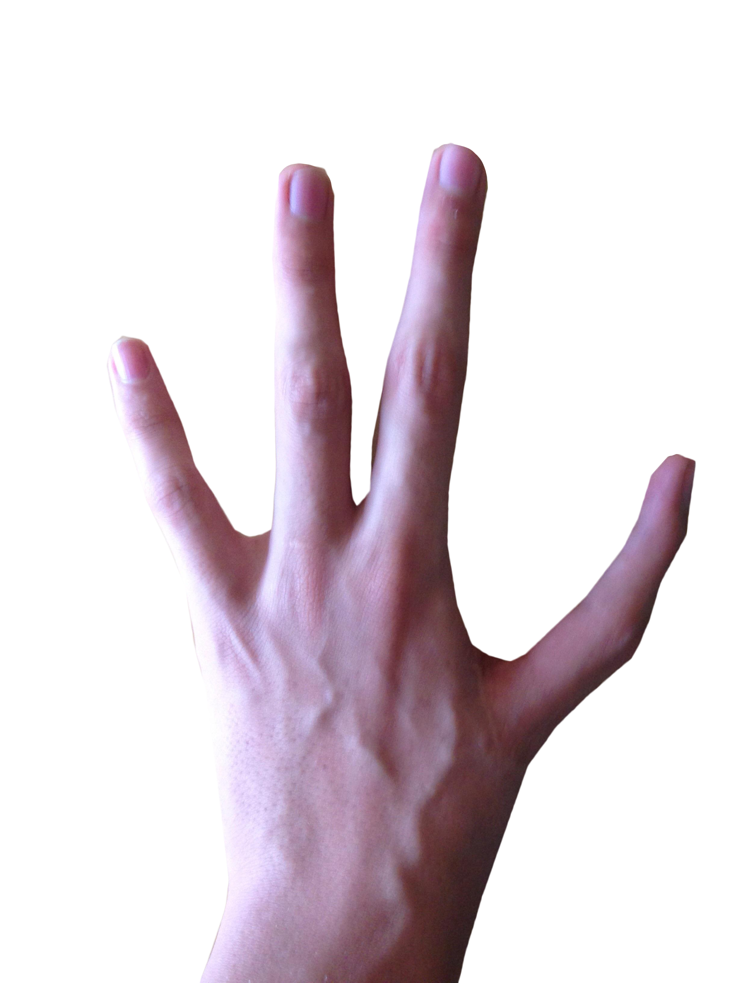 4fingers on hand clipart banner free library 4 Fingered Hand PNG Image - PurePNG | Free transparent CC0 PNG Image ... banner free library