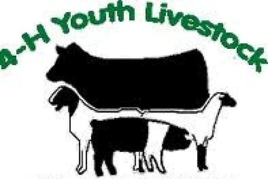 4-h animal clipart clipart royalty free library Community stock show set for Jan. 9-10 12-17-14 - Plainview Daily Herald clipart royalty free library