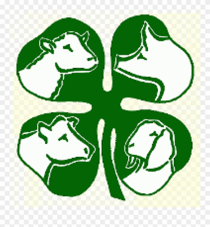 4-h animal clipart image transparent library 4 H Clipart Free - 4 H Livestock - Png Download (#1385203) - PinClipart image transparent library