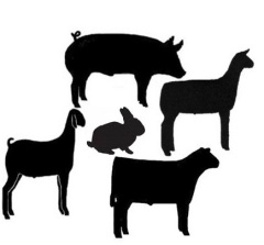 4-h animal clipart image black and white library Upcoming NC 4-H Livestock Events | Clover Gazette image black and white library