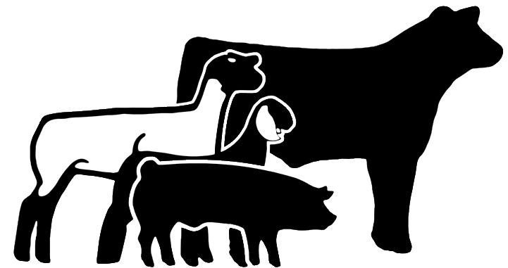 Animal show clipart graphic freeuse library Animl clipart livestock show #7 | 4H projects and fun | Showing ... graphic freeuse library