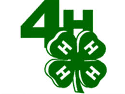 4-h club clipart clip free stock 4-H Calendar - Activities - Horse Club - Competitive Judging ... clip free stock