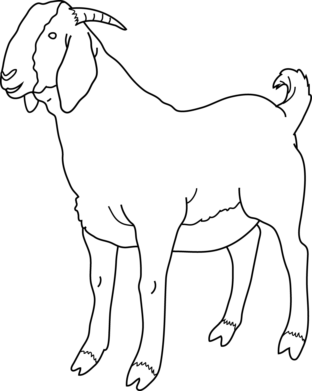 4-h goat clipart clip library download Clip Art Goat - Cliparts.co clip library download