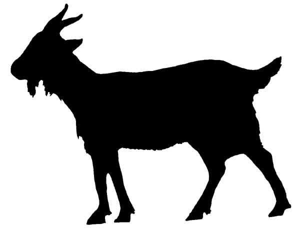 4-h goat clipart svg library stock Goat Outline | Free download best Goat Outline on ClipArtMag.com svg library stock