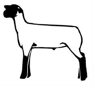 4h lamb clipart clip art free library club show lambs clipart   Res Div @ Mont. (Coming soon!)   animals ... clip art free library