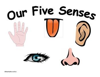 Five senses clipart images vector freeuse stock Free 5 Senses Cliparts, Download Free Clip Art, Free Clip Art on ... vector freeuse stock