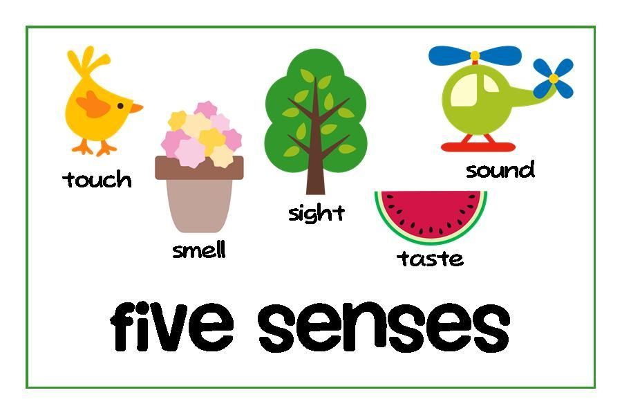 Labeling clipart banner freeuse download 5 senses clipart 5 » Clipart Portal banner freeuse download