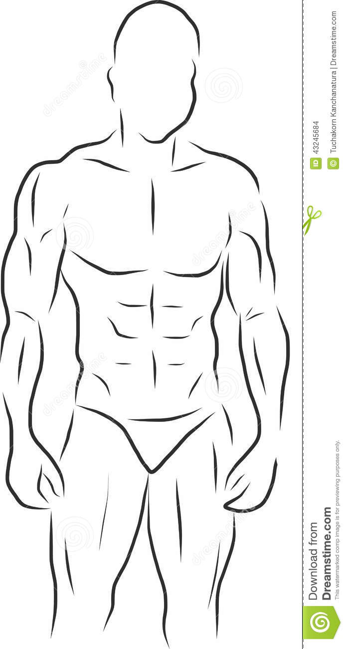 Six pack abs clipart - ClipartFest image library stock