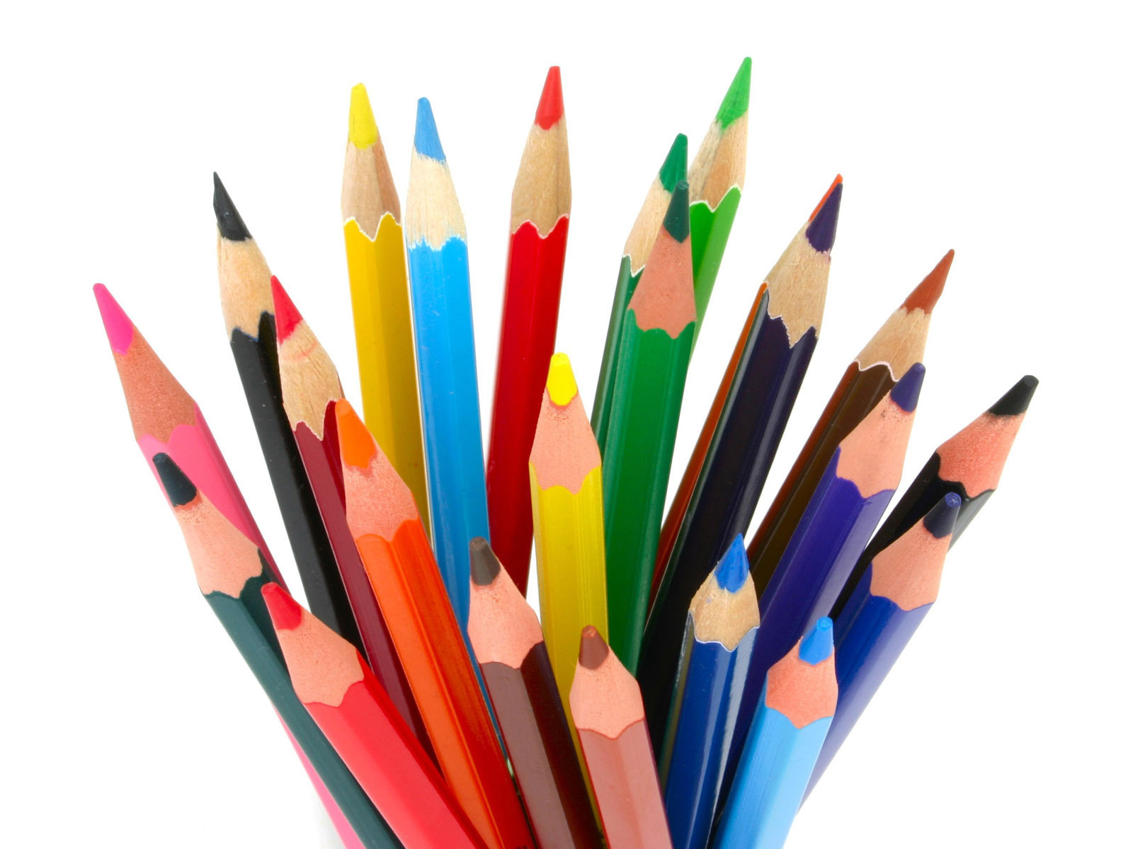 Colouring pencils station . Free colored pencil clipart