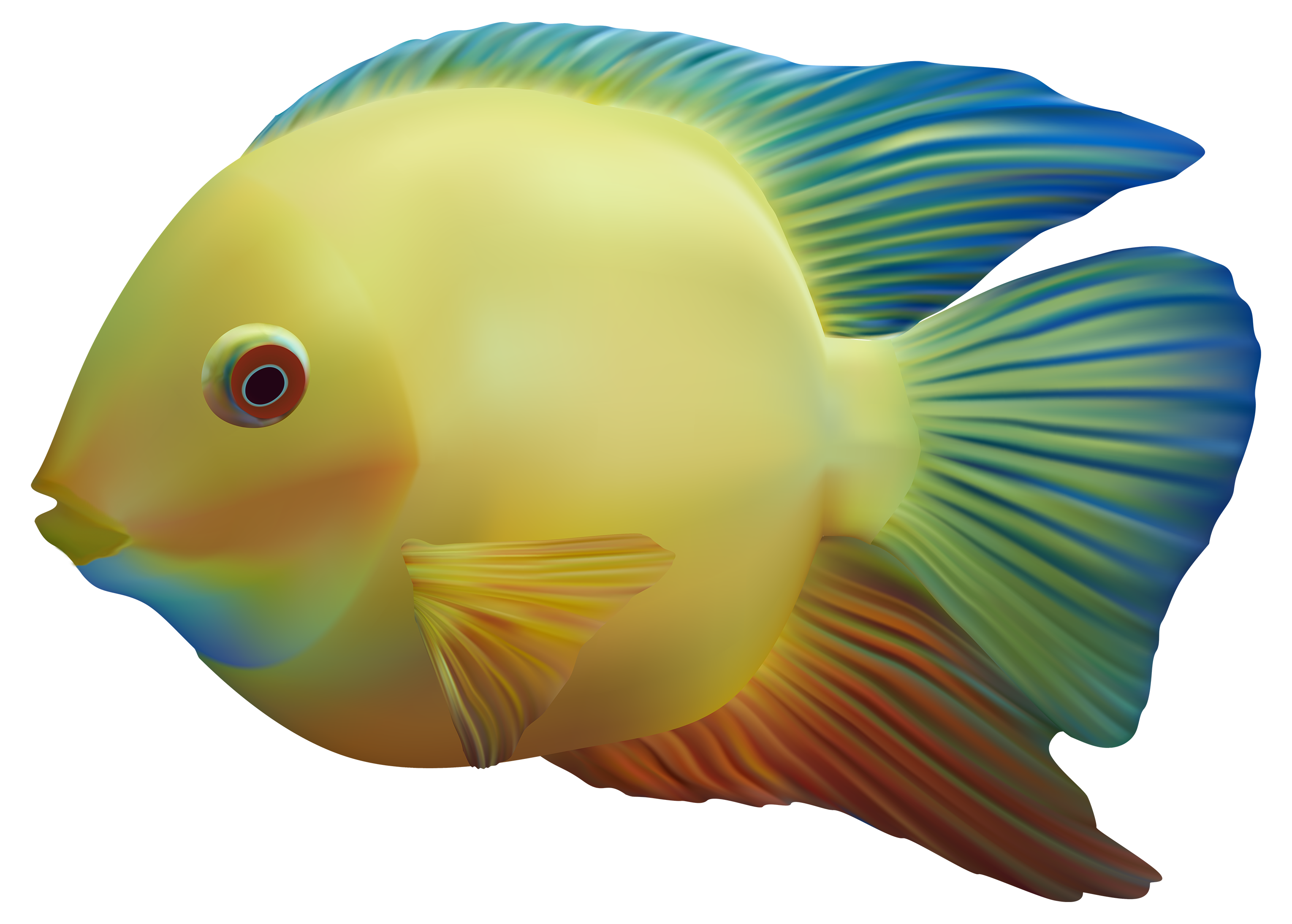 Realistic cool fish clipart images picture freeuse Download FISH Free PNG transparent image and clipart picture freeuse