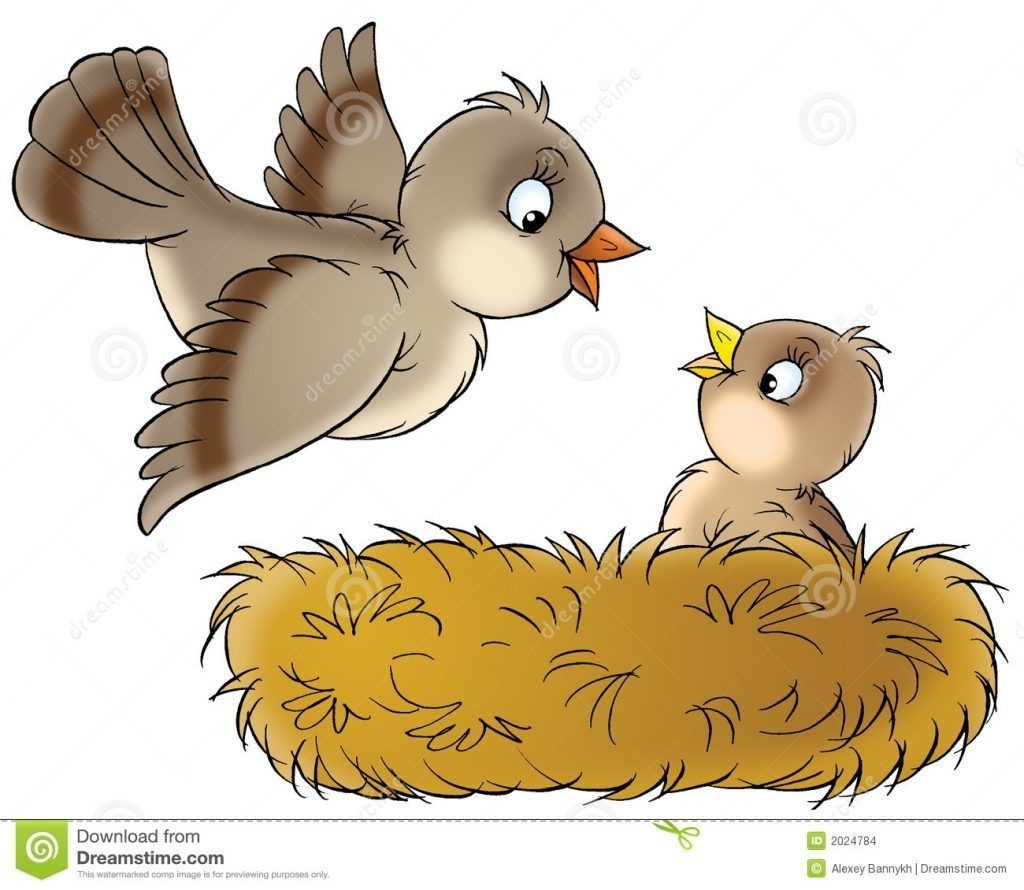 890 s clipart png transparent library In Clipart Of A Birds Nest Top Cartoon Bird Pencil And Color ... png transparent library