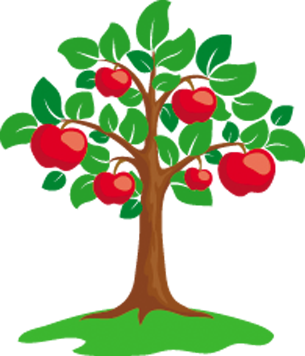 990 clipart clip art royalty free stock Apple Tree Clip art - dry fruit png download - 990*1153 - Free ... clip art royalty free stock