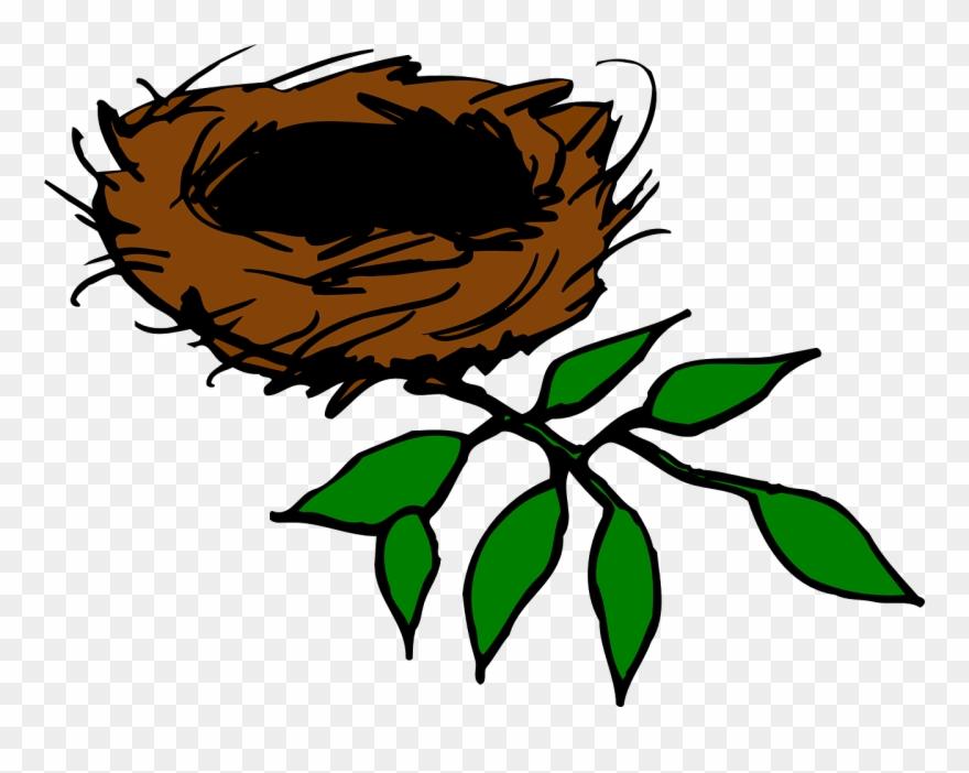 A bird nest clipart png free Bird\'s Nest Clipart - Nest In Tree Clipart - Png Download (#231265 ... png free