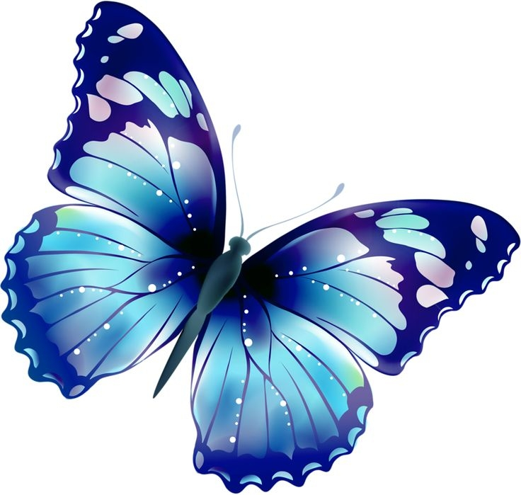 Butterfly clipart jpg png black and white download Butterfly Clip Art | Free Download Clip Art | Free Clip Art | on ... png black and white download