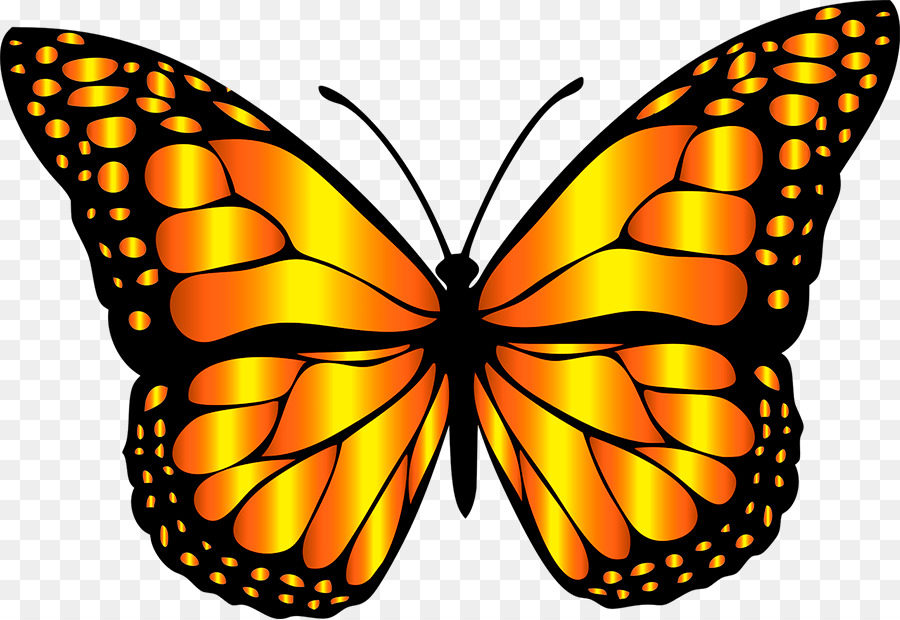 A clipart butterfly svg free download Butterfly Cartoon clipart - Butterfly, Wing, Graphics, transparent ... svg free download