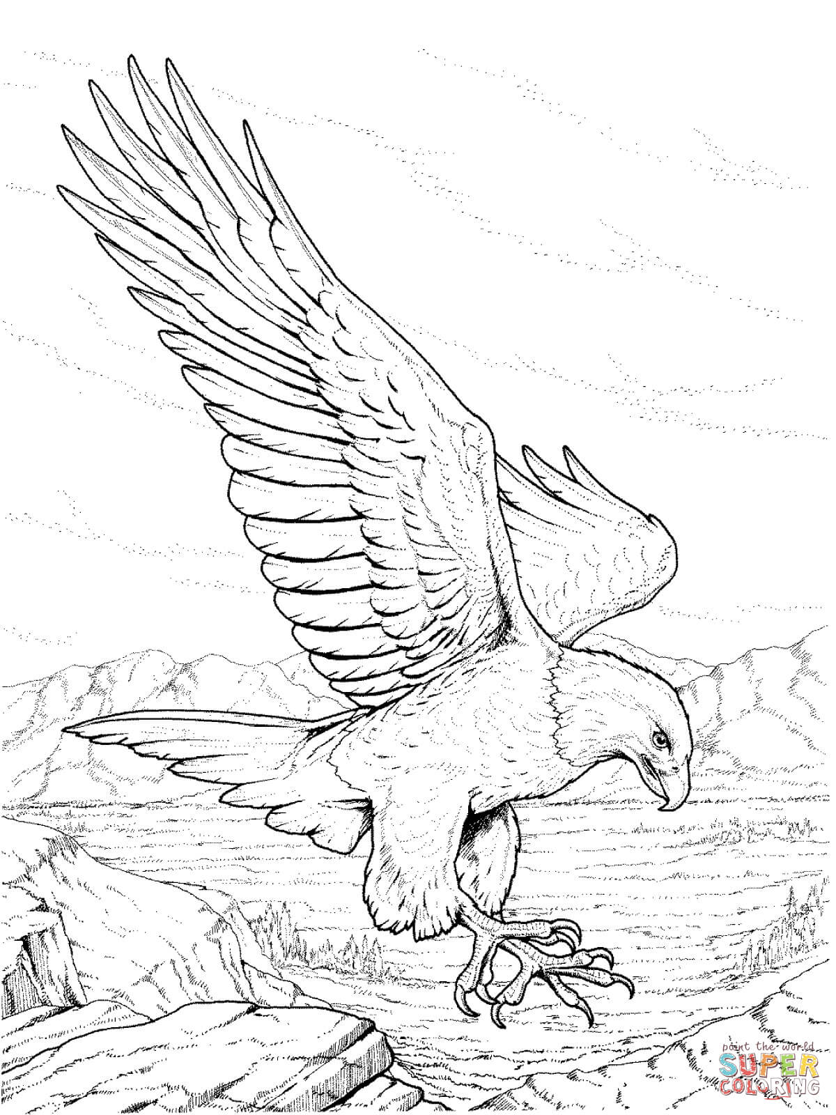 A clipart to color eaglels jpg stock Bald eagle coloring pages | Free Coloring Pages jpg stock