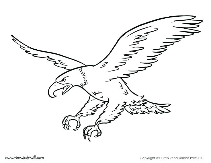 A clipart to color eaglels banner black and white stock eagle coloring page – supertechtelecom.co banner black and white stock