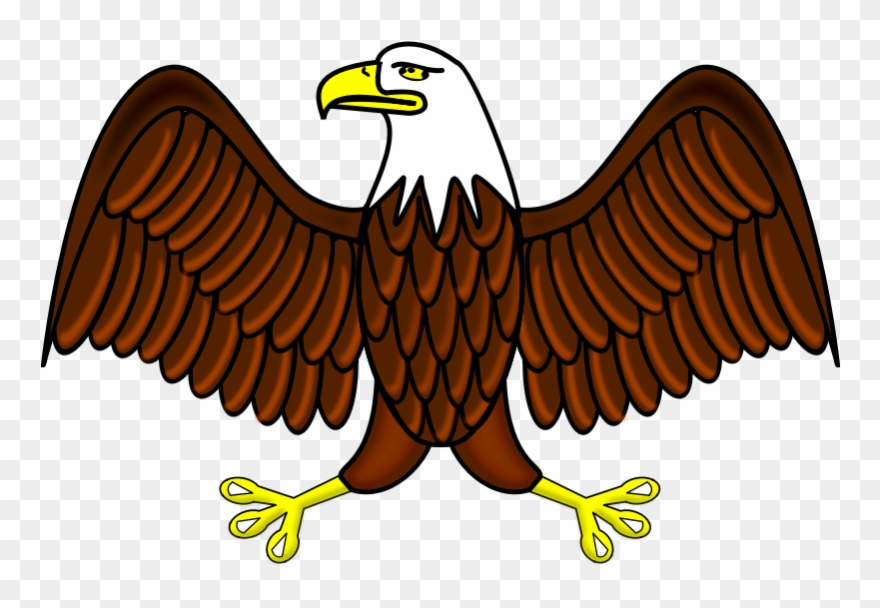 A clipart to color eaglels svg library download Clipart - Bald Eagle - Aguila Dibujo A Color - Png Download (#472494 ... svg library download