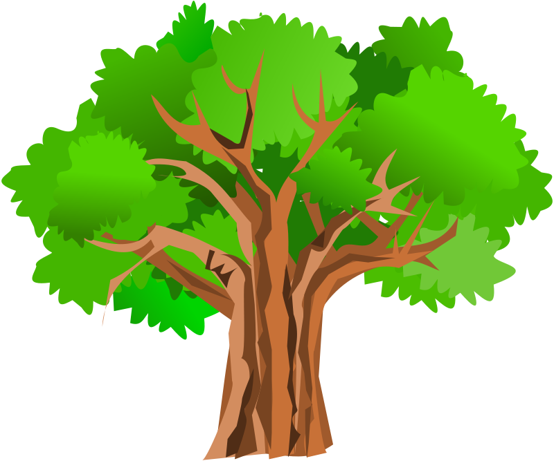 Oak tree clipart free graphic freeuse stock Tree Clipart at GetDrawings.com | Free for personal use Tree Clipart ... graphic freeuse stock