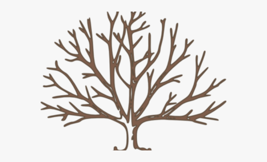 A dead tree clipart image free Dead Tree Clipart Branchless - Winter Tree How To Draw #1522312 ... image free