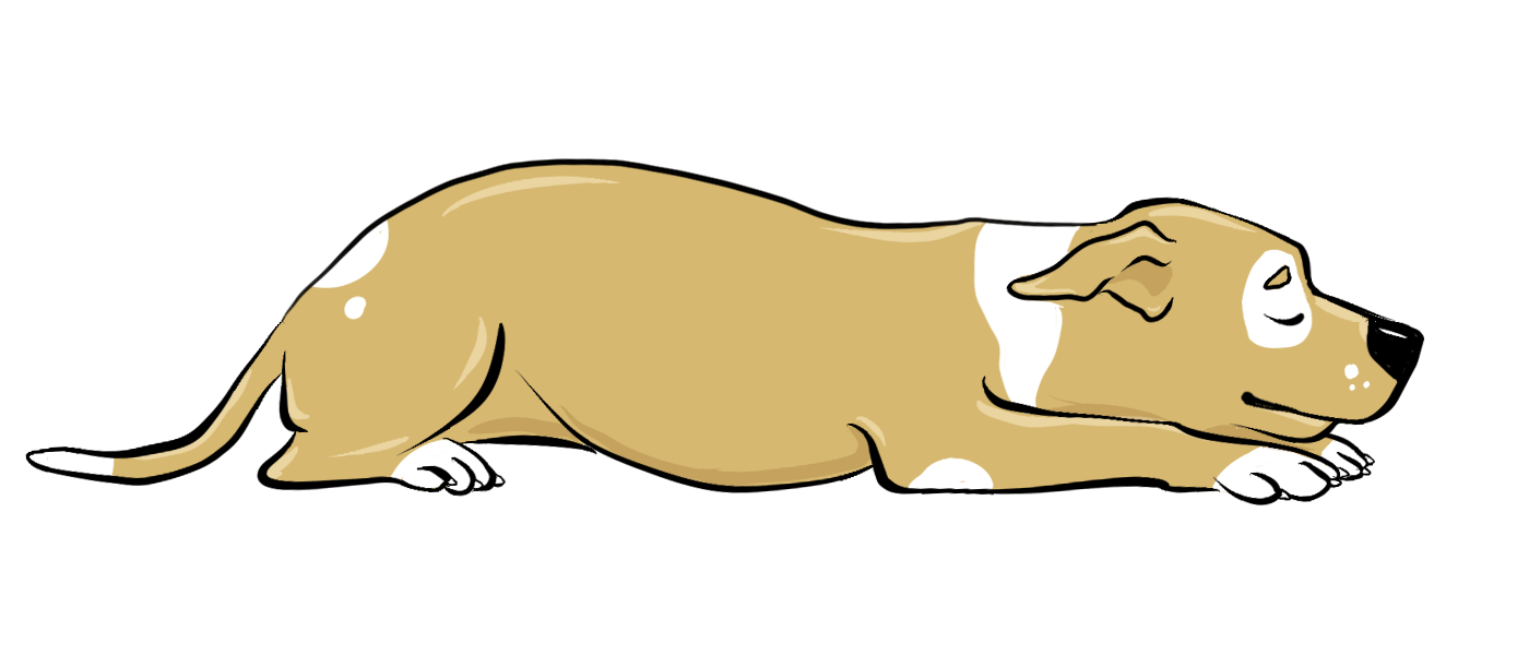 A dog sitting at man feet clipart graphic library library 5 Dog Sleeping Positions and What They Mean | petMD graphic library library