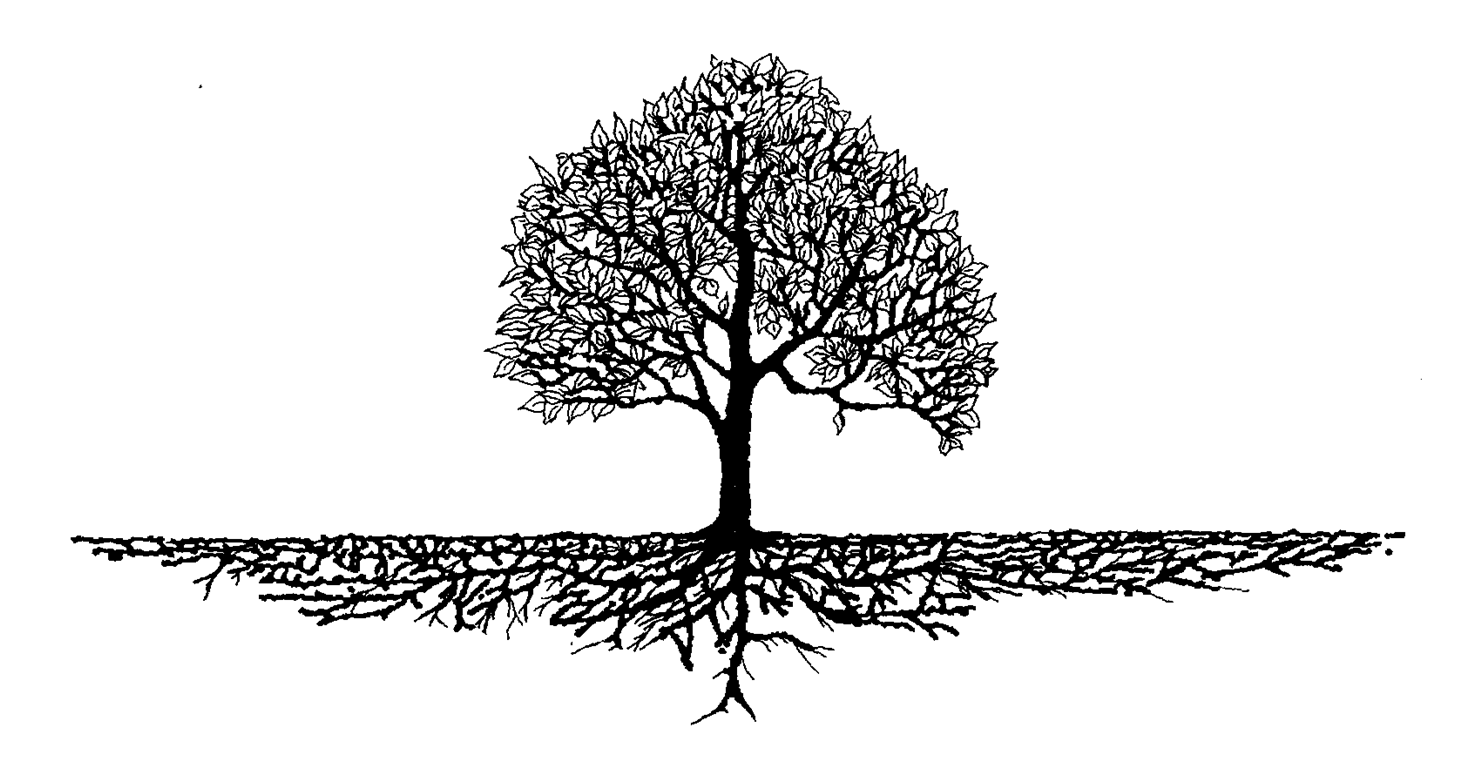 Tree root clipart vector black and white Family Reunion Tree PNG Transparent Family Reunion Tree.PNG Images ... vector black and white