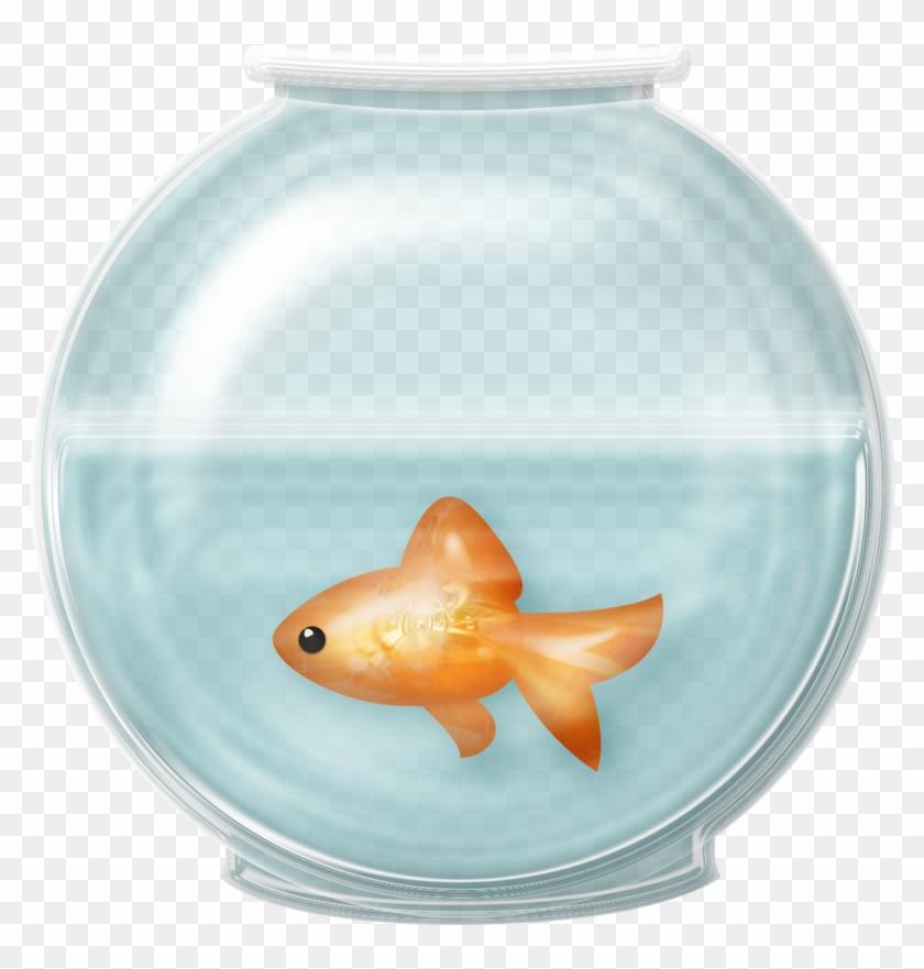 A fish bowl clipart png stock Fish Bowl Clip Art - Fish In Fishbowl Clipart, HD Png Download ... png stock