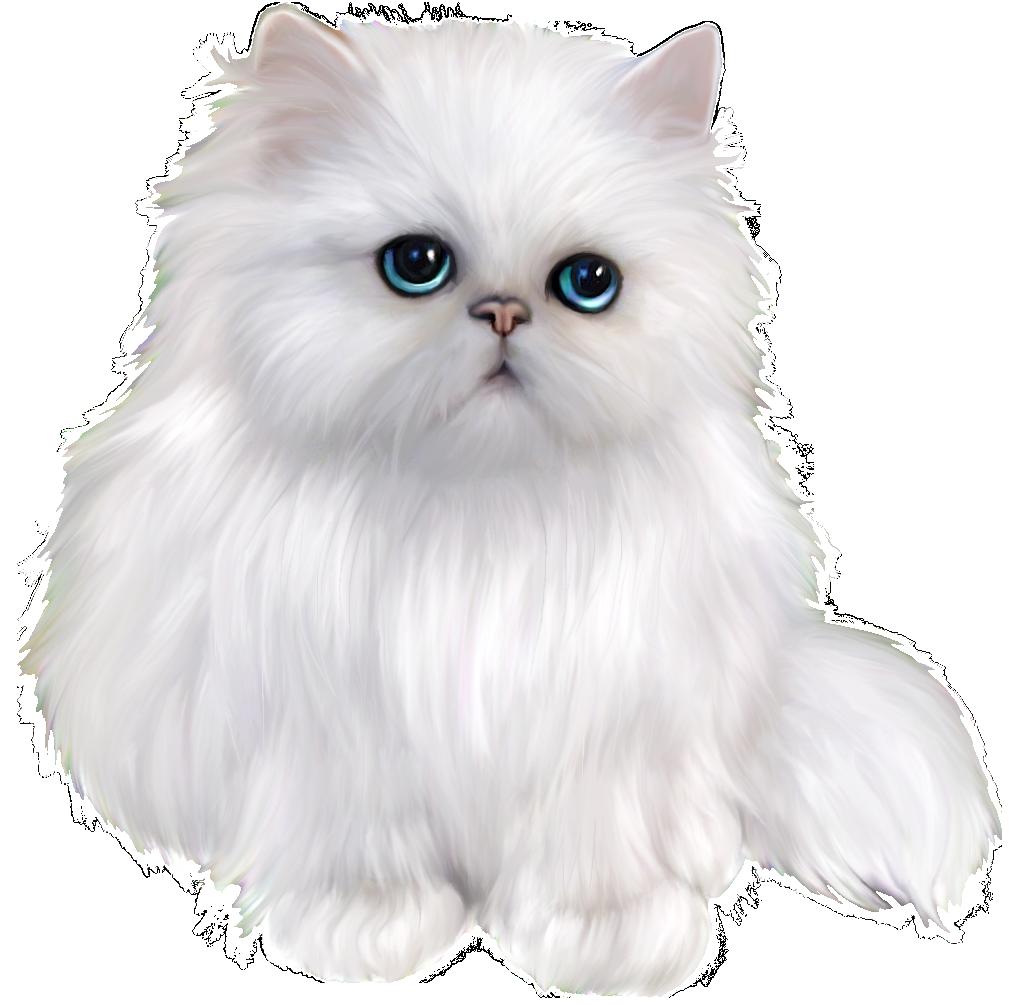 A fluffy cat clipart
