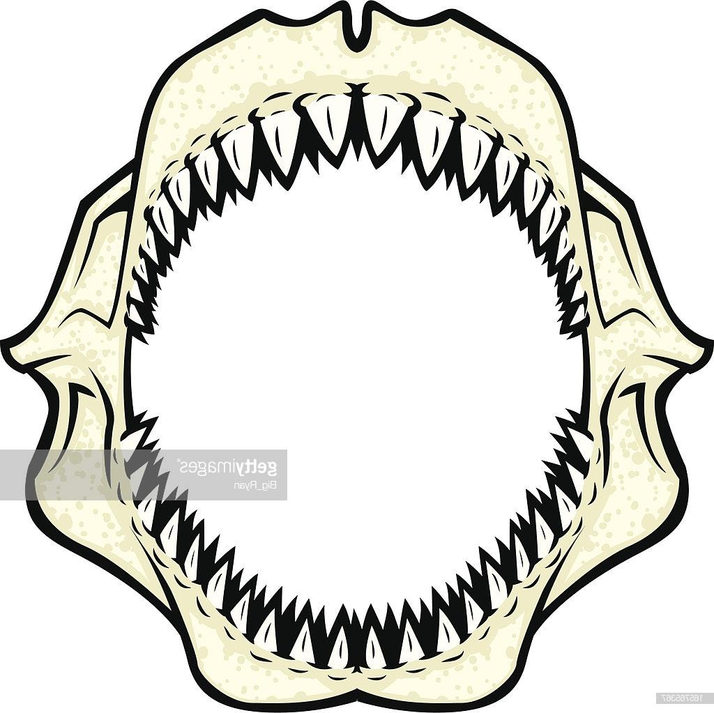 A jaw clipart banner royalty free Best Shark Jaws Clip Art Design » Free Vector Art, Images, Graphics ... banner royalty free