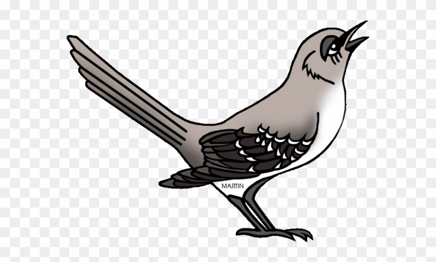 A mocking bird clipart vector royalty free library Mockingbird Clipart Tennessee - Northern Mockingbird Clipart - Png ... vector royalty free library