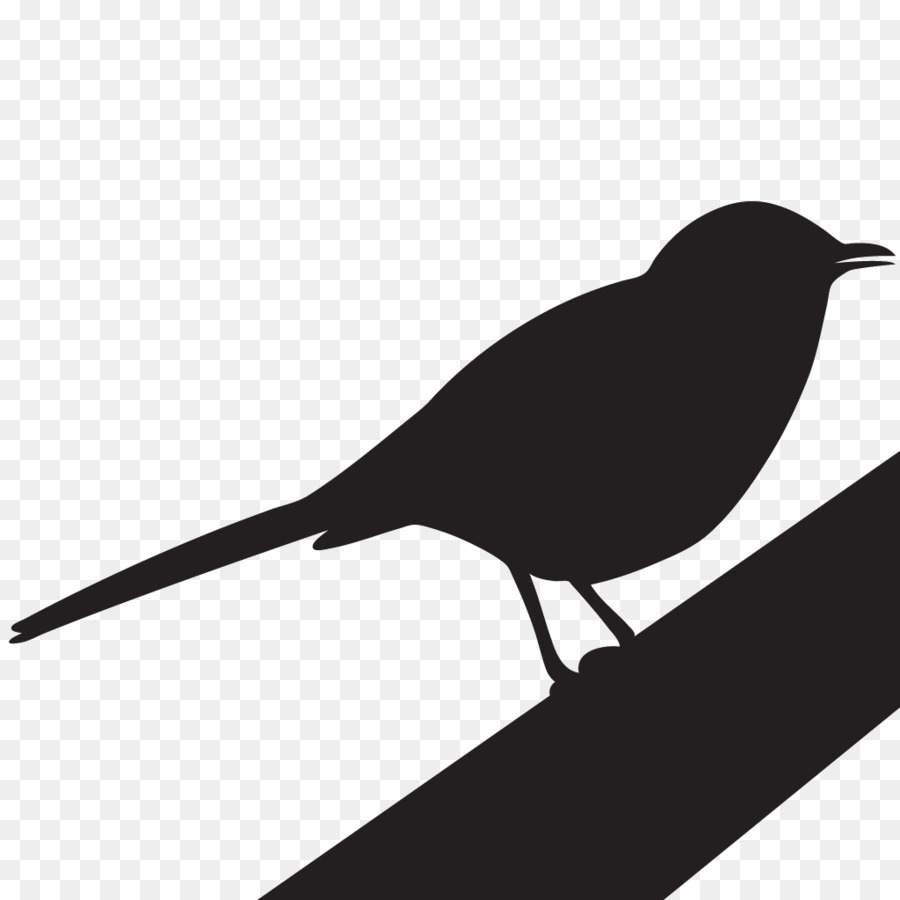 A mocking bird clipart clipart royalty free download Mockingbird Silhouette png download - 1024*1024 - Free Transparent ... clipart royalty free download