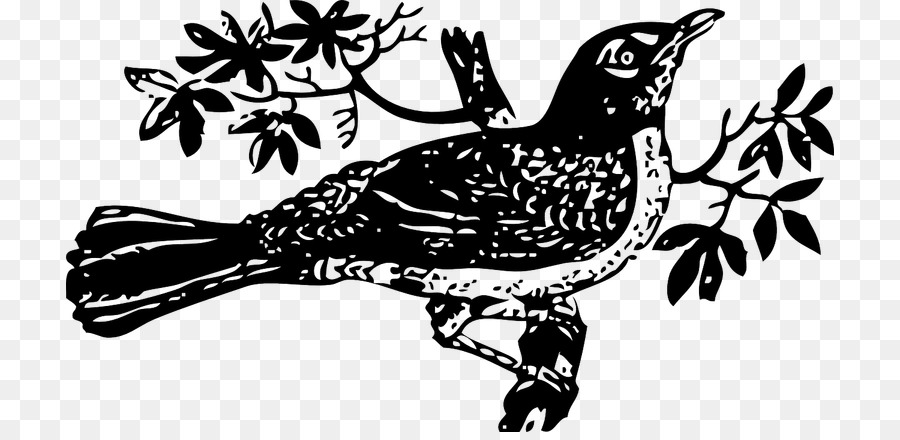 A mocking bird clipart clip art royalty free library Mockingbird Drawing png download - 768*432 - Free Transparent To ... clip art royalty free library