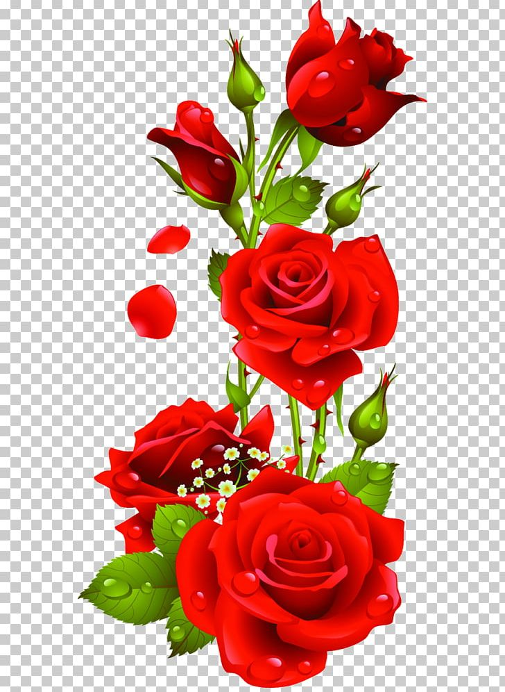 A open rose clipart picture royalty free stock Portable Network Graphics Rose Open Flower PNG, Clipart, Artificial ... picture royalty free stock
