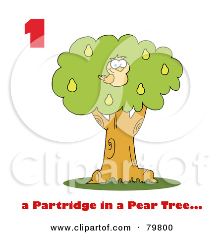 A partridge in a pear tree clipart banner royalty free stock Partridge in a pear tree clipart - ClipartFest banner royalty free stock