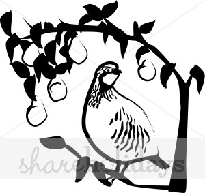 A partridge in a pear tree clipart graphic transparent download Partridge in a pear tree clip art - ClipartFest graphic transparent download