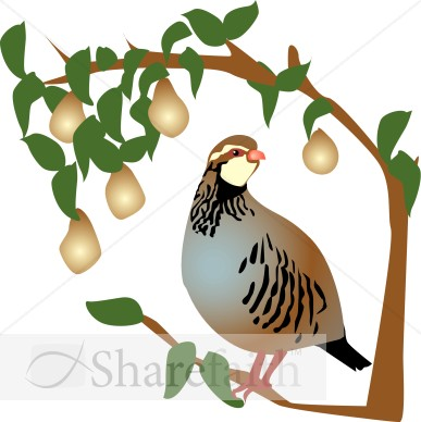 A partridge in a pear tree clipart png black and white stock Partridge in a Pear Tree Clipart | Religious Christmas Clipart png black and white stock