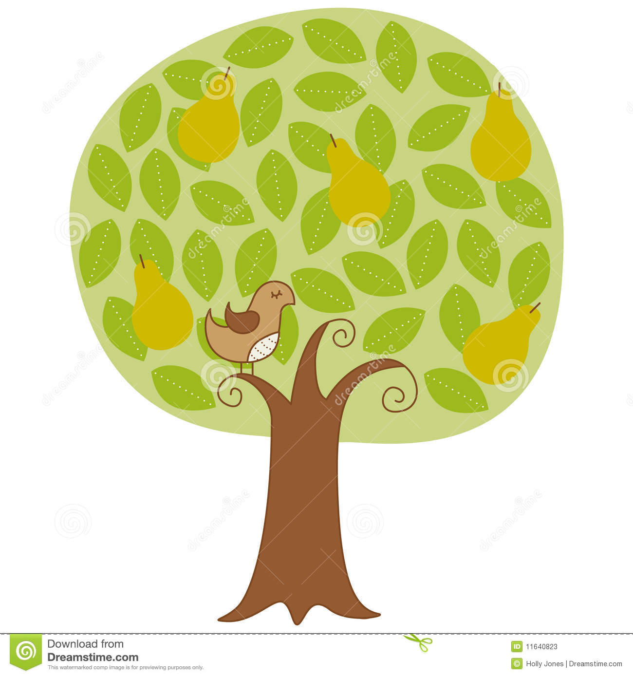 A partridge in a pear tree clipart clip free library Partridge In A Pear Tree Stock Photos - Image: 11640823 clip free library