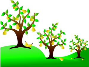 A partridge in a pear tree clipart clipart library download Free clipart pear tree - ClipartFest clipart library download