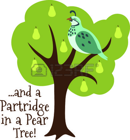 A partridge in a pear tree clipart banner black and white download Partridge in a pear tree clipart - ClipartFest banner black and white download