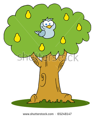 A partridge in a pear tree clipart clipart download Partridge In The Pear Tree Stock Photos, Royalty-Free Images ... clipart download