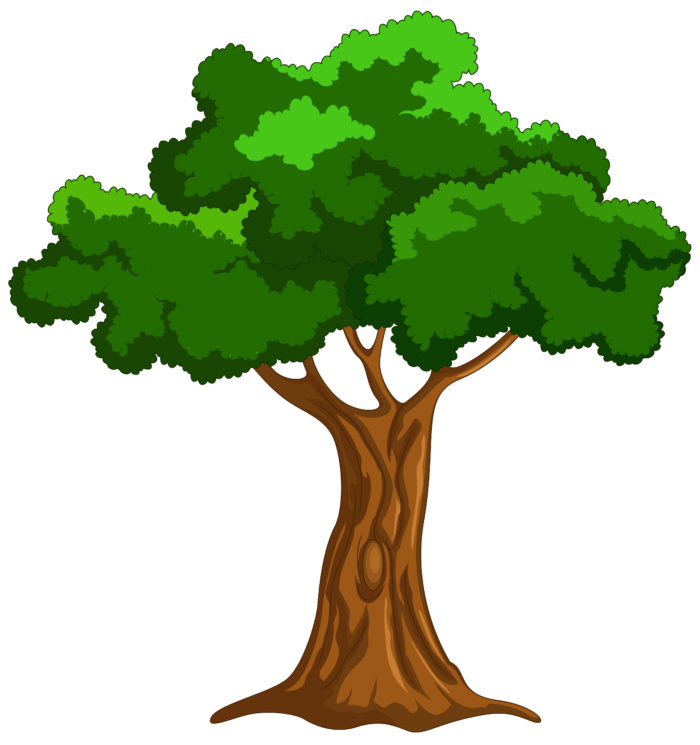 A tree clipart jpg royalty free download Mango Tree Clipart at GetDrawings.com | Free for personal use Mango ... jpg royalty free download