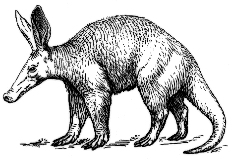 Free Cute Aardvark Cliparts, Download Free Clip Art, Free Clip Art ... banner freeuse download