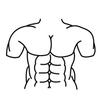 Abs Stomach Tummy Abdomen Torso Arrows Arrow Body Shape Clip Art ... graphic black and white library