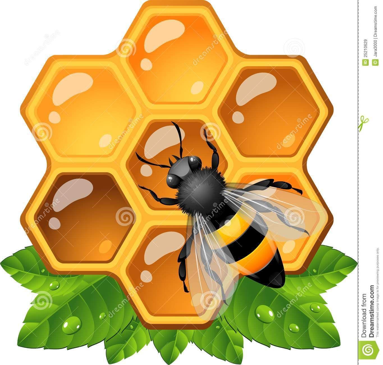Abeja en panal clipart image transparent stock abeja - Buscar con Google | Abejas en acción | Panal de abejas ... image transparent stock
