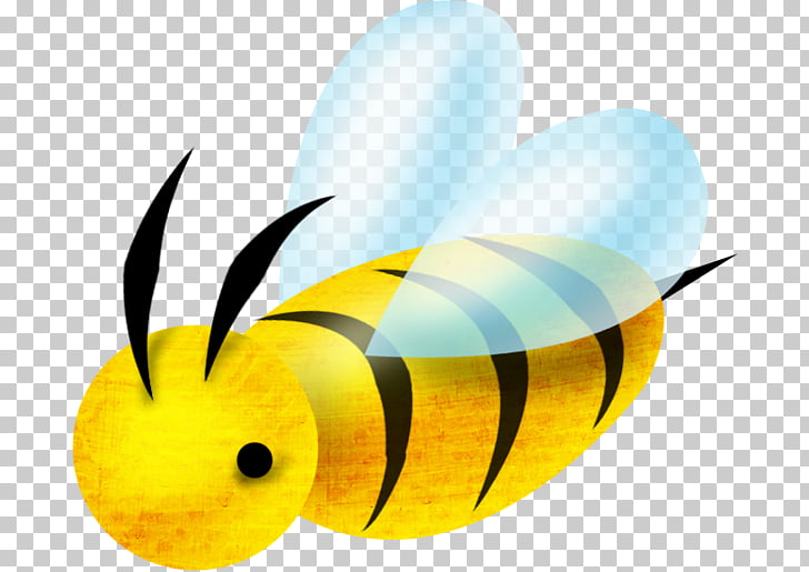 Abeja insecto apis florea, abeja de dibujos animados PNG Clipart ... clipart black and white