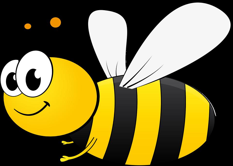 Abeja, Bi, Dibujos Animados, Miel, Insectos, Polinizar | material de ... graphic royalty free