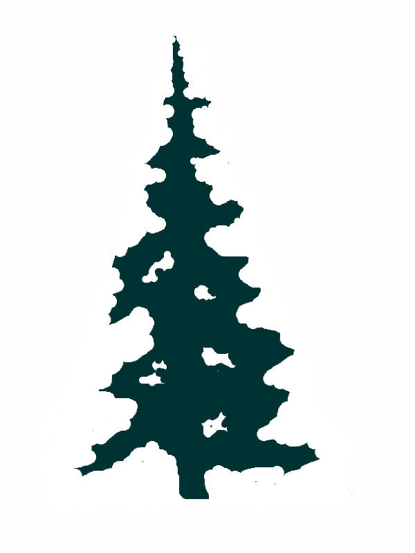 Abstract evergreen tree clipart clipart transparent download Free Evergreen Tree Outline, Download Free Clip Art, Free Clip Art ... clipart transparent download
