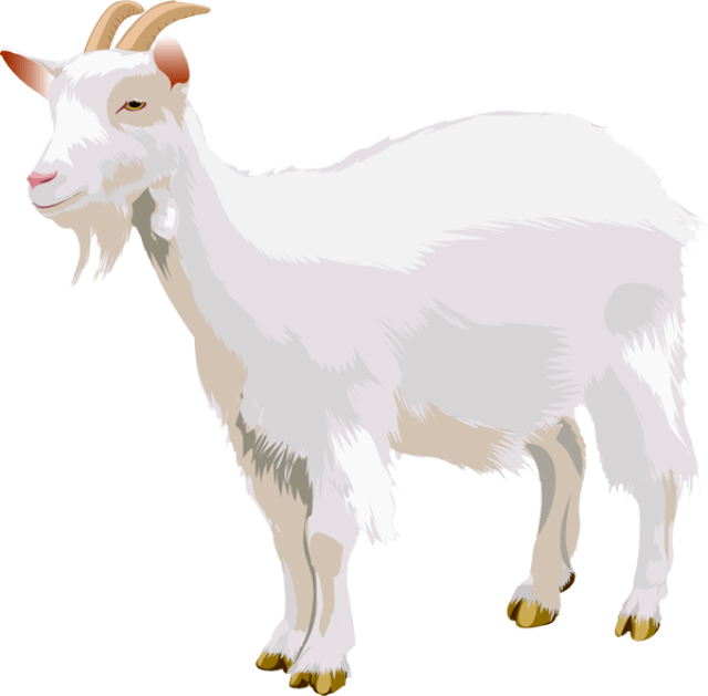 Abstract goat clipart jpg transparent library Download Free png goat - DLPNG.com jpg transparent library