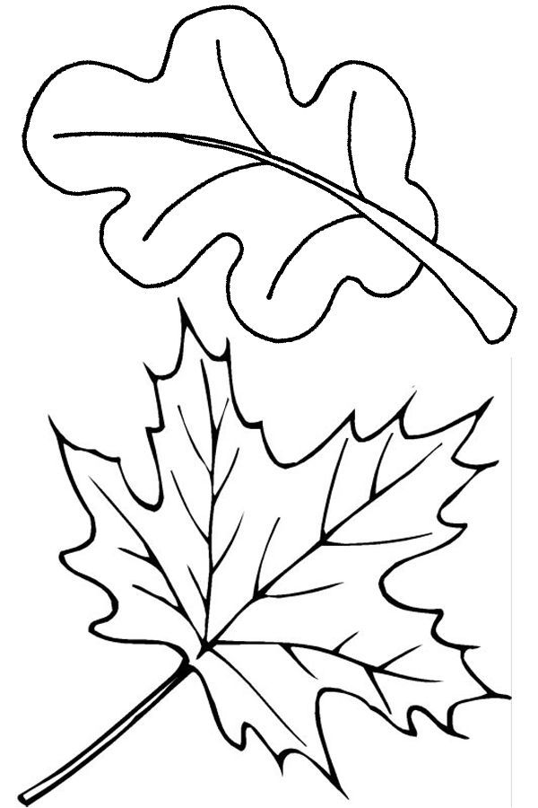 Abstract maple leaf clipart coloring black and white banner Two fall leaves coloring page - Free Printable Coloring Pages by ... banner
