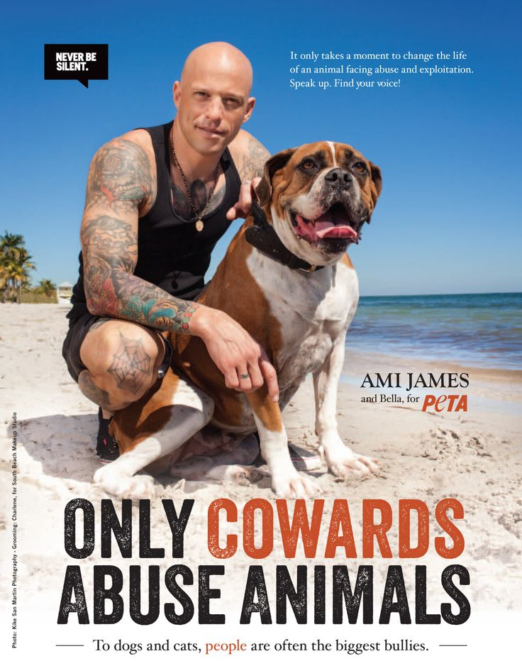 Clipartfest ami james. Abused dog clipart black and white peta